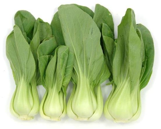 बोक चोय सब्जी उगाने की ऊँचाई