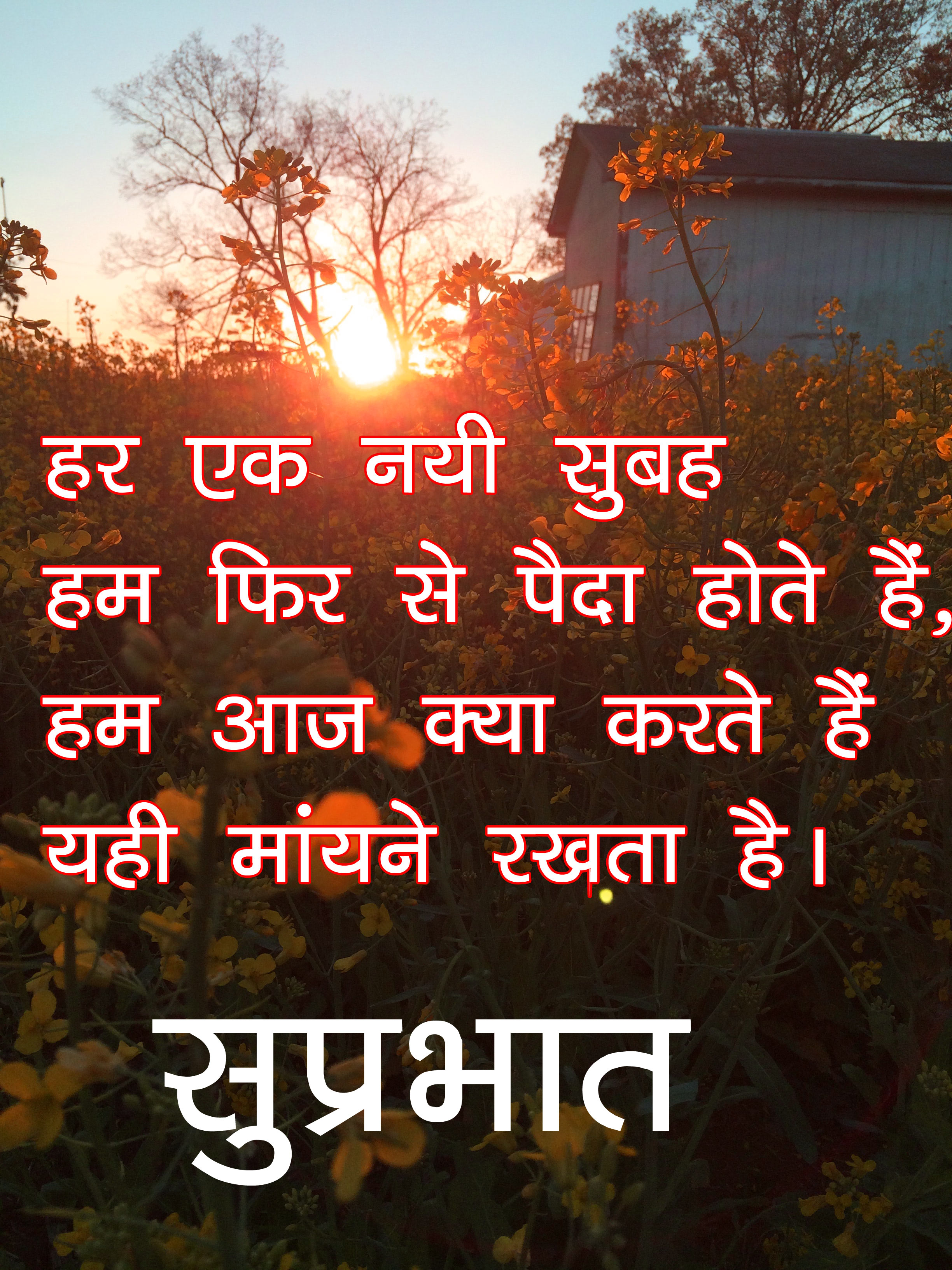Good Morning image sms for Friends in hindi 1